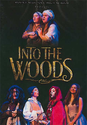 2017 Into the Woods DVD