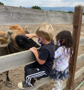 Students Learning About Farming